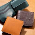 Bi-Fold-Wallet-coin-type